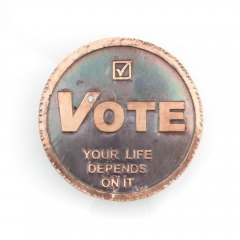 Etched_VoteYourLifeDepends